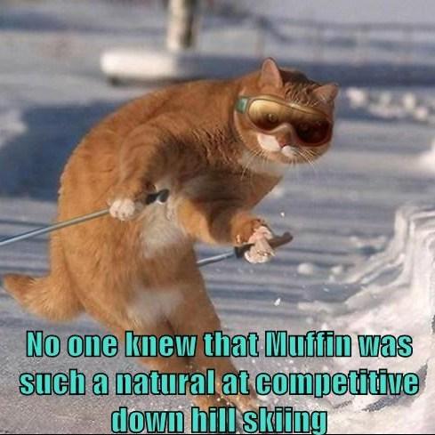 Muffin Skiing