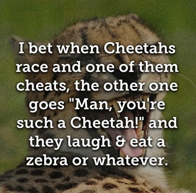 When Cheetahs Race