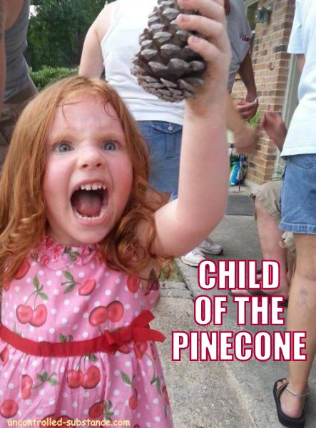 Child of the Pinecone