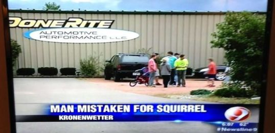 Man Squirrel