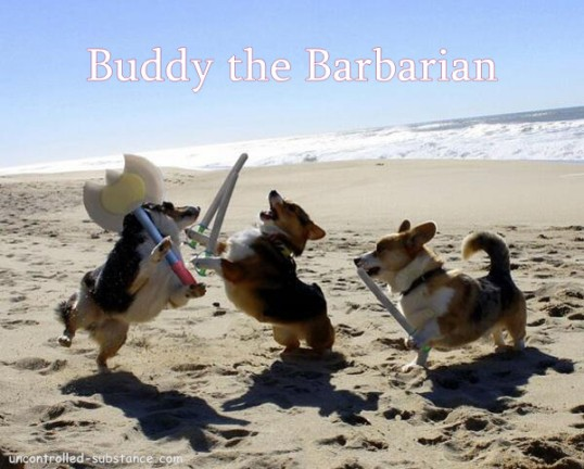 Buddy The Barbarian